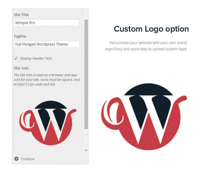 custom-logo-option