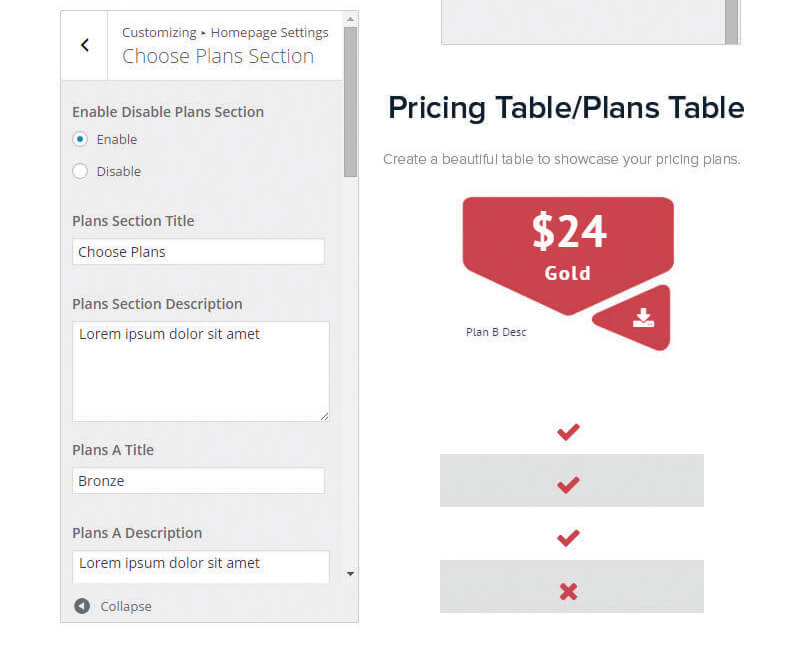 pricing-table-options