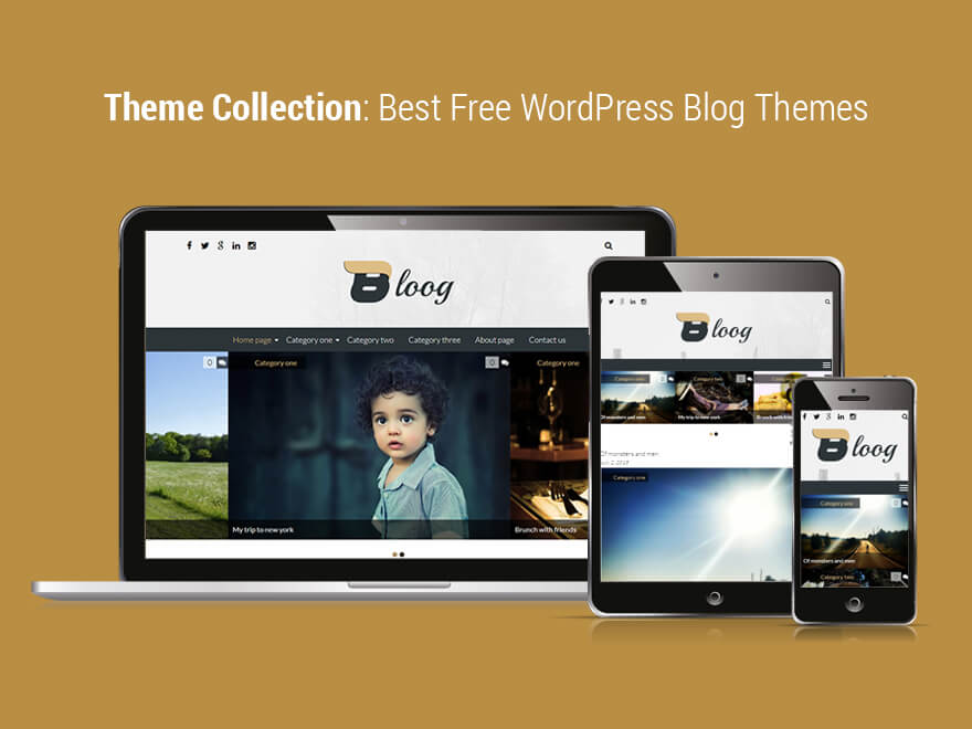 10+ Best Free Responsive WordPress Blog Themes 2016