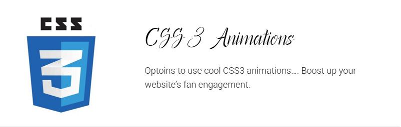CSS3-animation