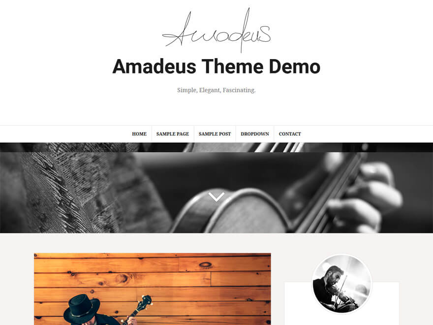 21+ Best Free Responsive WordPress Blog Themes 2018