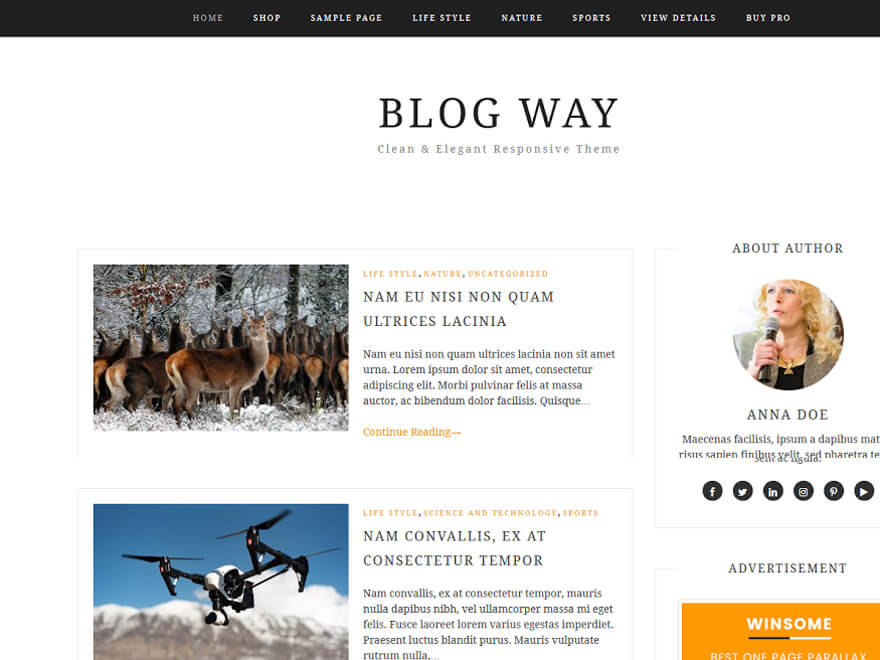 Blog Way - Free WordPress Blog Themes