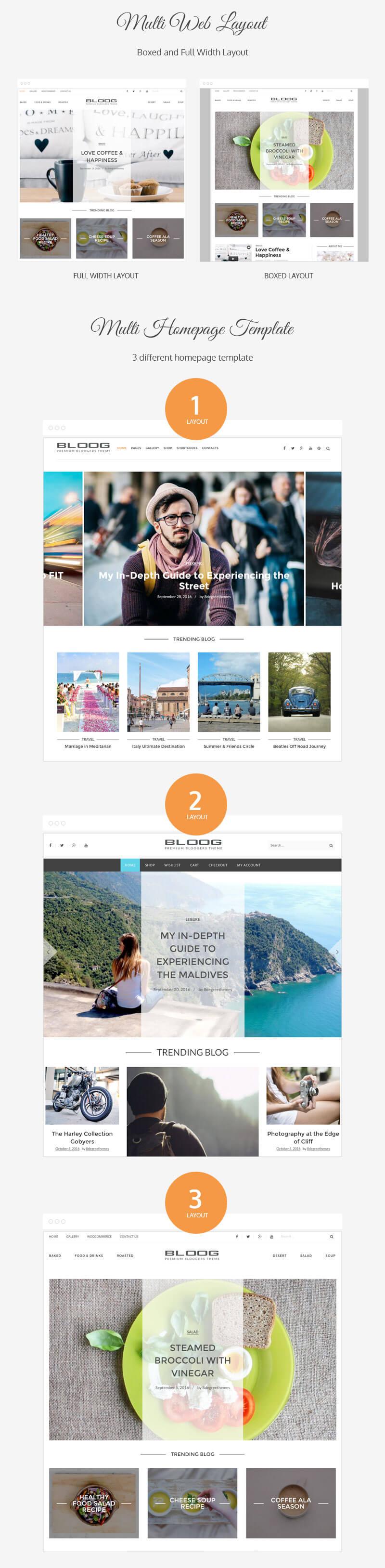Bloog Pro – Premium WordPress Blog Journal Theme