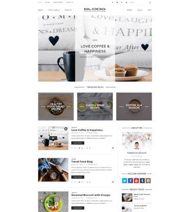Bloog Pro - Premium WordPress Blog Journal Theme