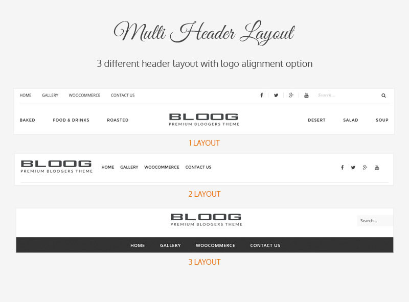 Bloog Pro WP theme feature - Multi header layout