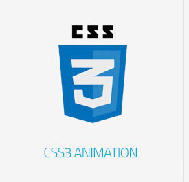 Bloog Pro WP theme feature - CSS3 Animation