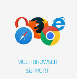 Bloog Pro WP theme feature - Multi Browser support