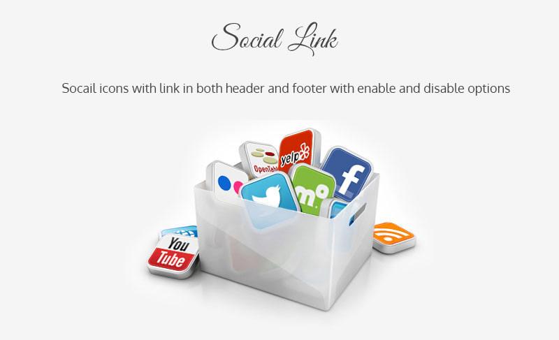 Bloog Pro WP theme feature - Social Link