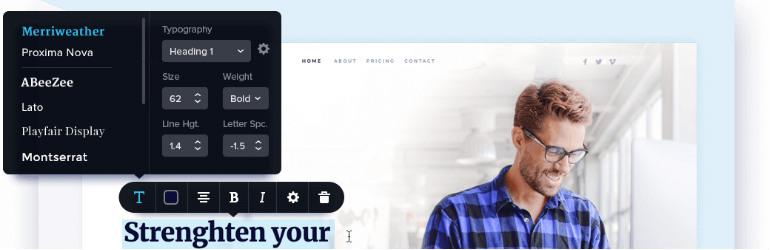 Brizy WordPress Builder