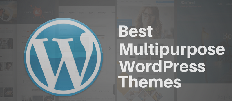 Best Mulitpurpose WP themes
