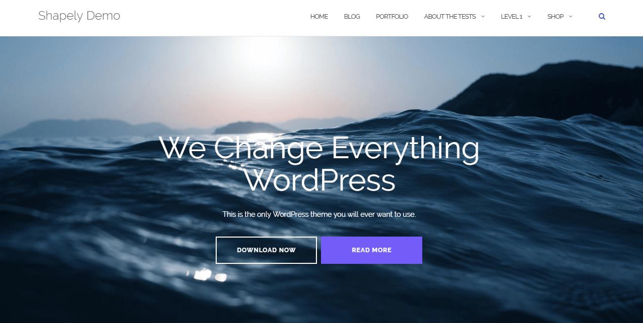 shapely free portfolio wordpress theme for 2018