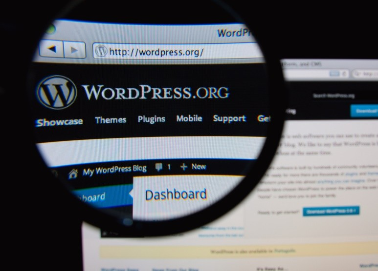 secrets about wordpress that you must know