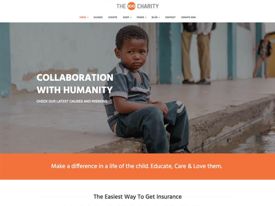 The100 WordPress Theme - Charity Layout