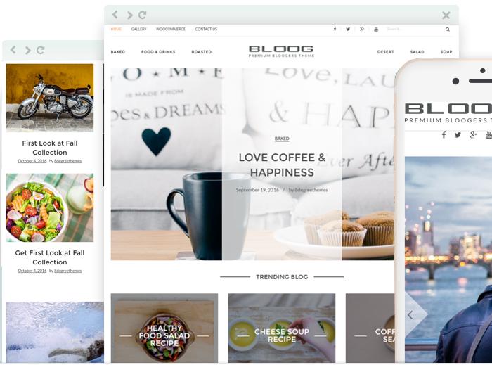 Bloog Pro - Premium Bloggers Theme