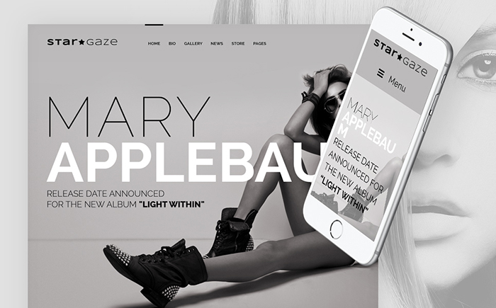 Stargaze - Media and Celebrity Responsive WordPress Theme