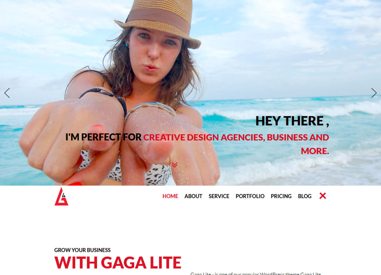 Gaga Lite-Best Free One page WordPress Themes