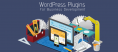 WordPress Plugins Required For Business Development