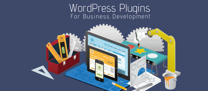 14 Types of WordPress Plugins Required For Business Development