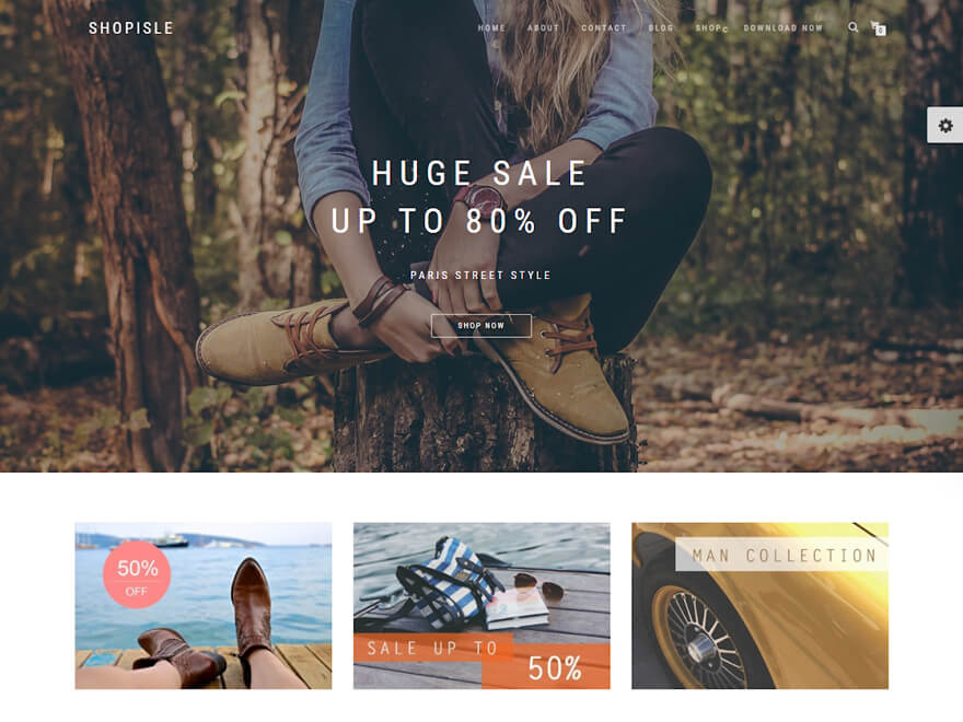 Shopisle - Best E-commerce and WooCommerce WordPress Themes and Templates
