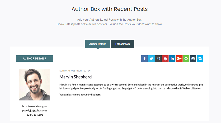 Ultimate Author Box Lite: Template 5