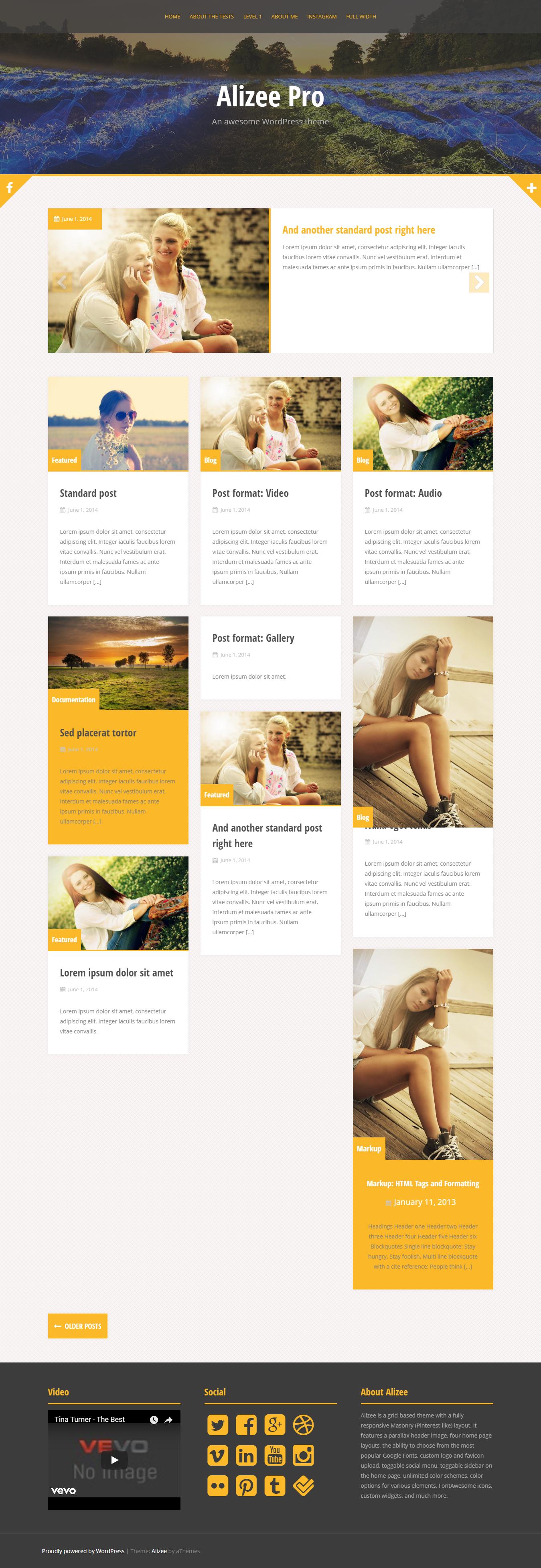 Alizee Pro - Best Premium Responsive WordPress Themes