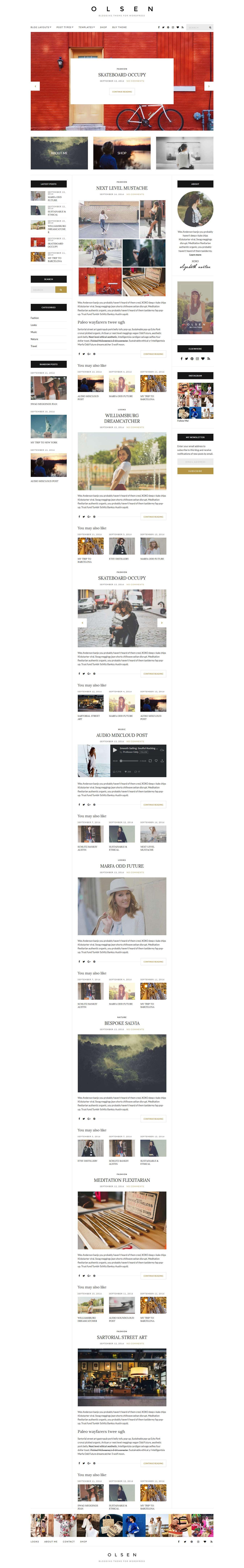 Olsen - Best Premium Responsive WordPress Themes