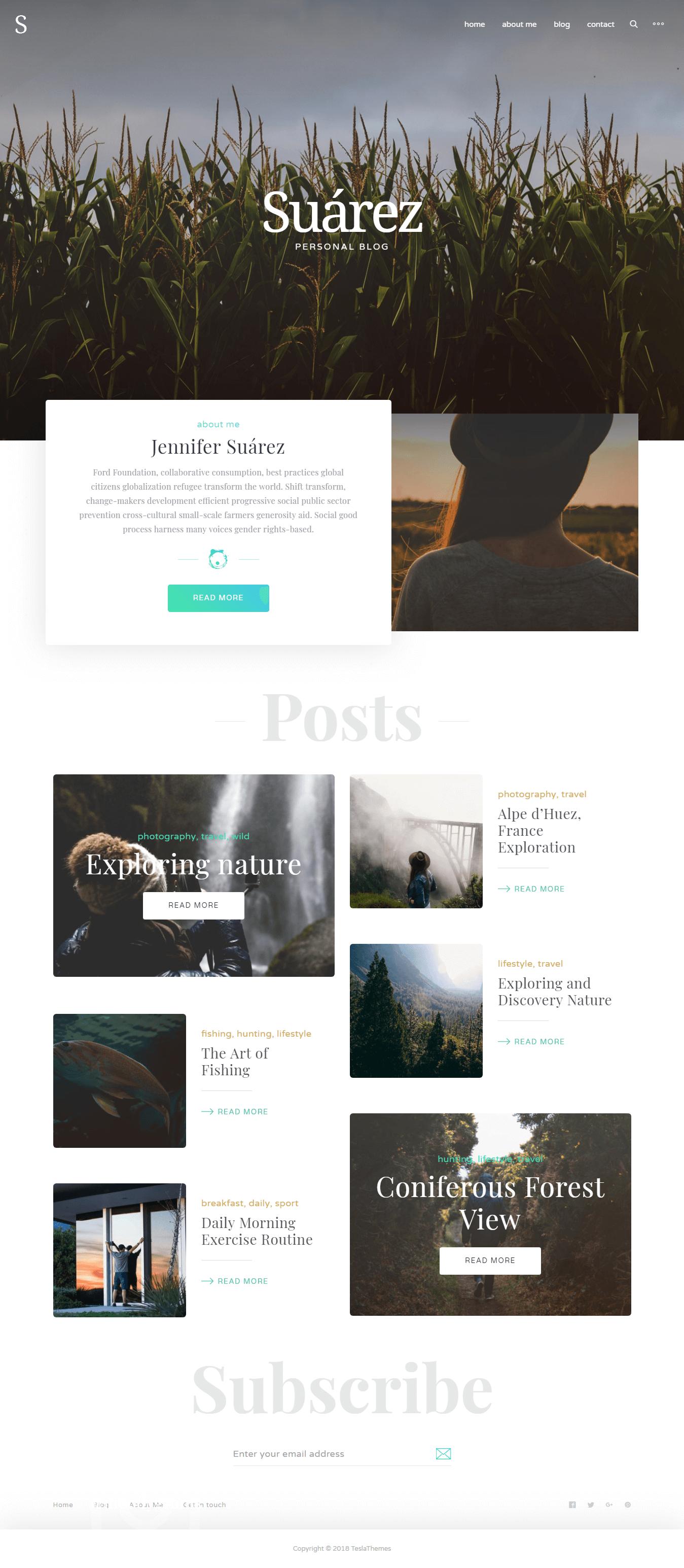 Suarez - Best Premium Responsive WordPress Themes