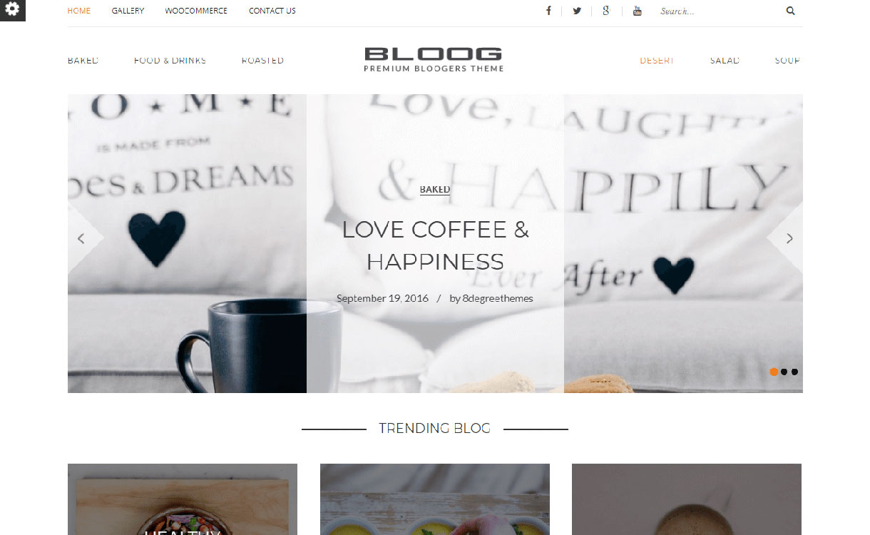 bloog-pro-best-premium-wordpress-blog-themes