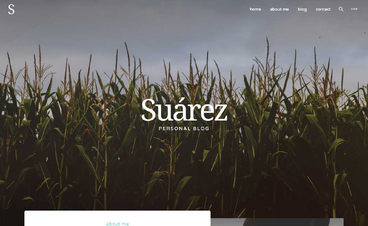suarez-best-premium-wordpress-blog-themes