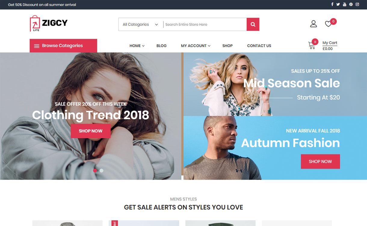 Zigcy lite-WordPress eCommerce Theme
